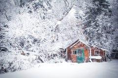 粉碎的客舱在一个白色冬天森林里 免版税库存图片
