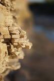 粉碎的岩石壁架 免版税库存图片