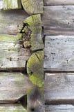 粉碎的木表面 库存图片