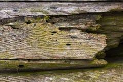 粉碎的木表面 免版税图库摄影