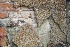 粉碎的灰泥膏药砖墙背景 图库摄影