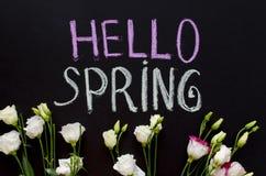 粉笔画文本`你好春天在黑板的`和南北美洲香草花 免版税库存照片