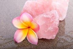 粉红彩笔和黄色赤素馨花开花与蔷薇石英healin 免版税库存图片