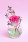 粉红彩笔玫瑰和蜡在玻璃开花 免版税库存照片