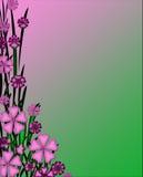 粉红紫色和绿色花卉文教用品背景墙纸 库存照片