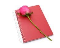 粉红色玫瑰和在空白背景的红色笔记本 免版税库存图片