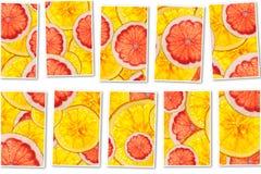粉红色葡萄柚和桔子混合五颜六色的被切的果子拼贴画 免版税库存图片