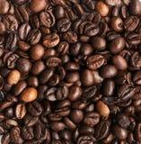 整粒咖啡豆纹理背景 库存照片