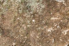 粒状砂岩纹理 库存照片