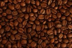 2粒豆咖啡 库存照片
