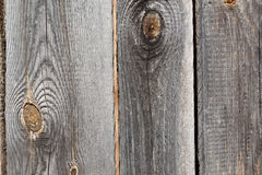 粗砺的木头 图库摄影