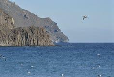 粗砺的海岸在Cabo de加塔角 免版税图库摄影