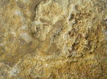 粗砺的石头纹理  免版税库存照片