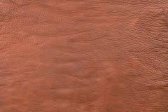 粗糙地颗粒状纹理褐色自然皮革 布朗皮革,纹理特写镜头 免版税库存照片