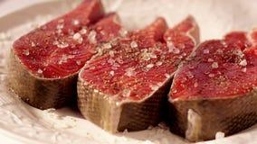 粗糙的海盐 厨师三文鱼去骨切片储蓄英尺长度食物 经验丰富的粗暴红色鱼的宏观射击 三利益  股票录像