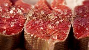粗糙的海盐 厨师三文鱼去骨切片储蓄英尺长度食物 经验丰富的粗暴红色鱼的宏观射击 三利益  股票视频