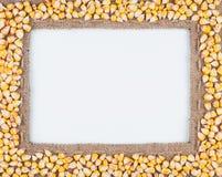 粗麻布和玉米豆框架  库存图片