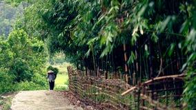 粮食作物妇女运载的篮子Sa Pa谷的 免版税图库摄影