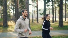 精力充沛的年轻人学生在实践一起集中的公园跑步在晴朗的秋天天 活动家 影视素材
