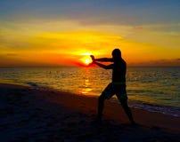 精力充沛的波浪在阿鲁巴 免版税库存照片