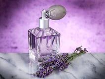 精华淡紫色 库存照片