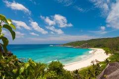 精妙的热带海滩 库存图片