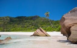 精妙的Anse椰树海滩在塞舌尔群岛 库存图片