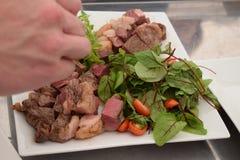 精心烹制的肉用草本和蕃茄在板材 免版税库存照片
