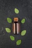精油瓶用在黑石backgr的新鲜的绿色薄菏 图库摄影