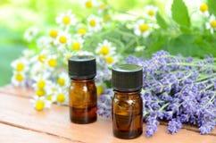 精油用淡紫色和春黄菊 免版税图库摄影