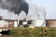 精炼厂糖 库存照片