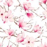 精美木兰开花无缝的传染媒介样式 免版税库存图片