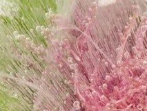 精美桃红色冰有机抽象 库存图片