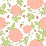 精美狂放的玫瑰色样式 免版税库存照片