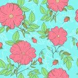 精美狂放的玫瑰色样式 库存图片
