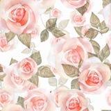 精美玫瑰,水彩花卉无缝的样式9 免版税图库摄影
