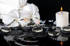 精美白色木槿,禅宗的美好的温泉概念向机智扔石头 图库摄影