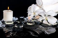 精美白色木槿,禅宗石头低温温泉静物画  免版税库存图片