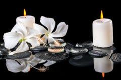 精美白色木槿,禅宗石头美丽的温泉静物画  库存照片