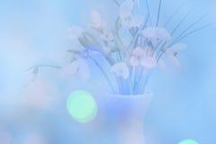 精美snowdrops两次曝光与一蓝色bokeh backgrou的 库存照片
