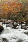 精采秋天颜色,冲的小河 库存照片