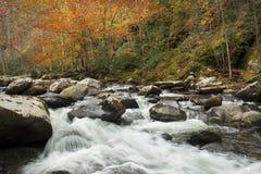 精采秋天颜色,冲的小河 免版税库存照片