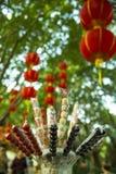 糖上漆的果子和中国灯笼 库存照片