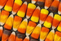 糖味玉米样式 免版税图库摄影