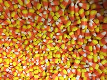 糖味玉米照片 库存图片