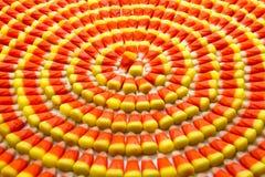 糖味玉米 免版税库存图片
