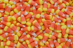 糖味玉米 库存图片