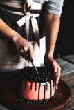 糖果商切开蛋糕用巧克力和装饰用无核小葡萄干和桑树 乡村模式 库存照片