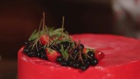 糖果商在草本和莓果红色蛋糕装饰投入  股票视频
