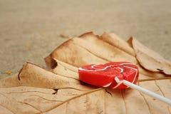糖果在一片棕色叶子的华伦泰心脏 免版税图库摄影